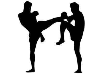 Online kickboksles